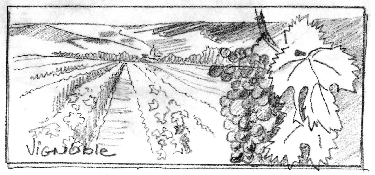 Exposition temporaire – Géologie et vin